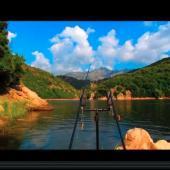 Vidéo de pêche de la carpe